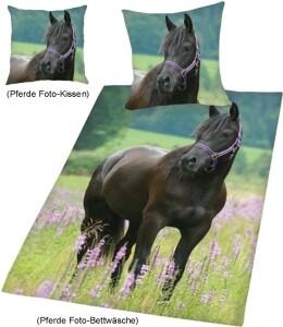 foto bettw sche mit kissen pferd auf wiese. Black Bedroom Furniture Sets. Home Design Ideas